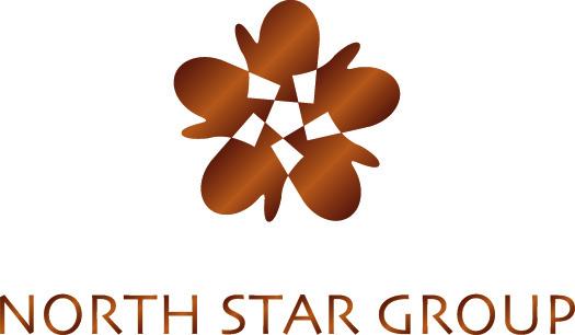 NorthStarGroup Logo.JPG .jpg