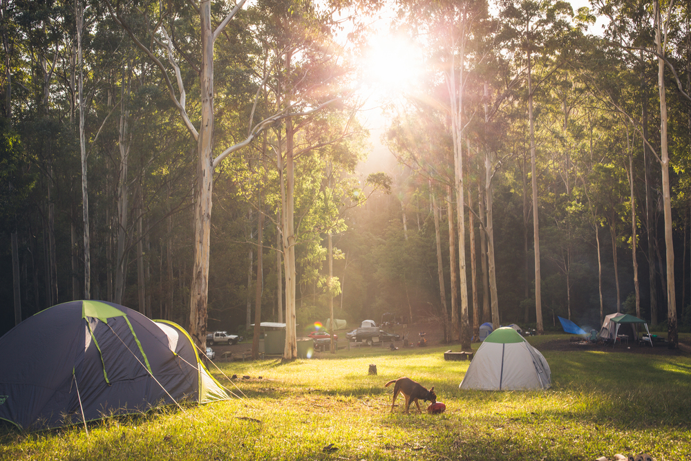 Basin Campground - Watagans State Forest NSW.