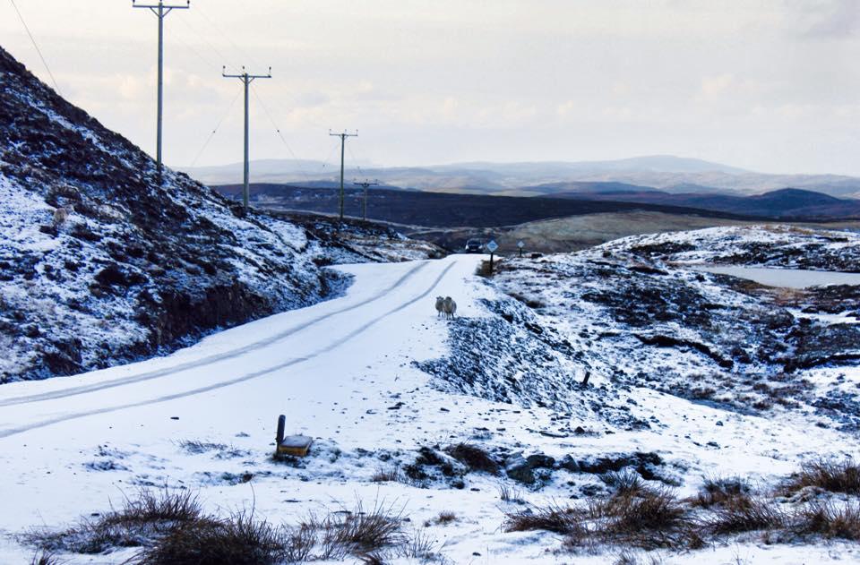 Shetland Islands, Scottish2015