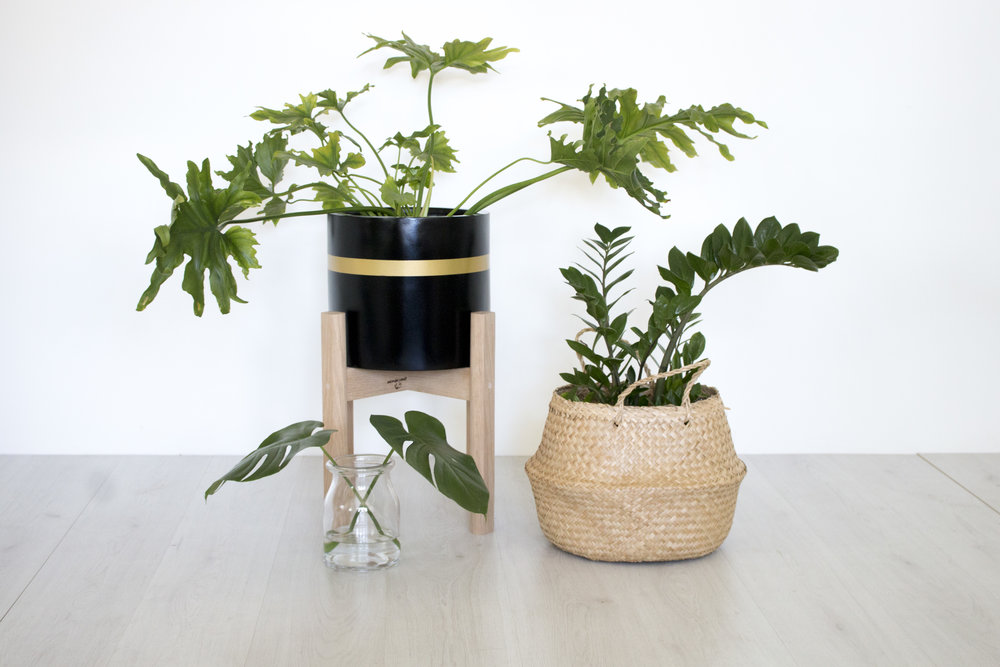 Product Photography & Styling Pot - Modern Muse Home