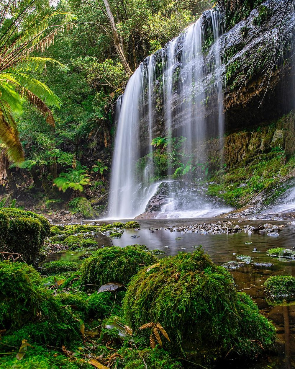 Russell Falls, Mt Field National Park, Tasmania