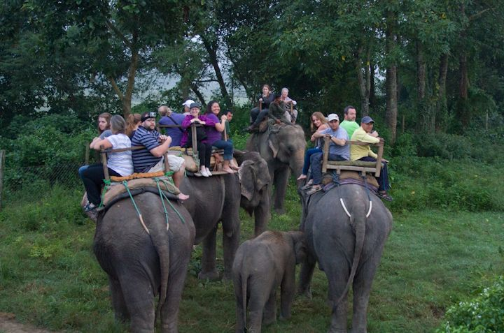 We also had the joy of riding elephants to see the black rhinos.