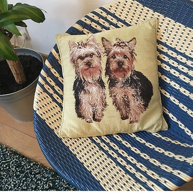 Picked up these lovely little cushions at Oxfam the other day for my dear girlfriend @erikatouboul - she has taste! Good choice x . . #interiordesign #cushion #design #homedecor #homemade #handmade #dogs #interior