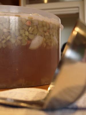rhubarb+champagne+fermenting+1.JPG