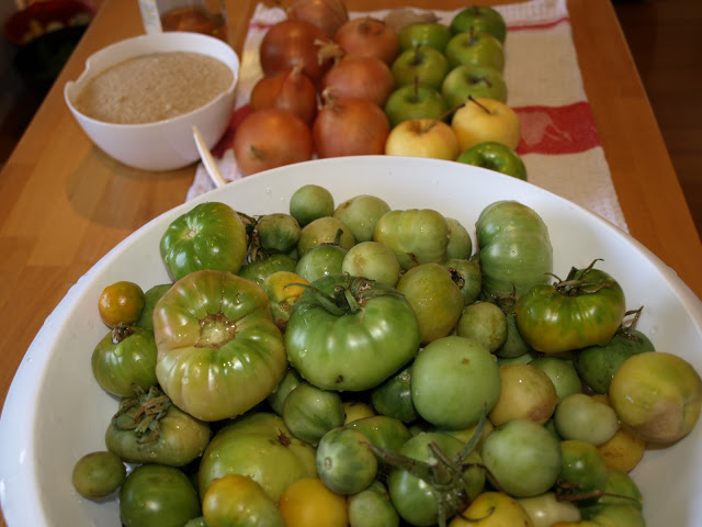 Green+Tomatoes+Ready+to+start.JPG