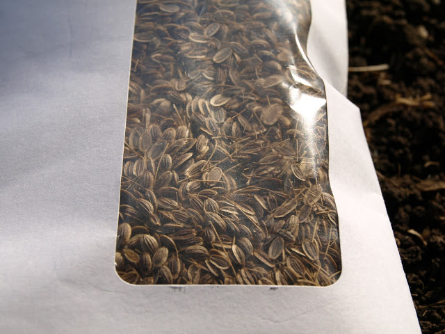 Dill+Seeds+in+Envelope+2.JPG