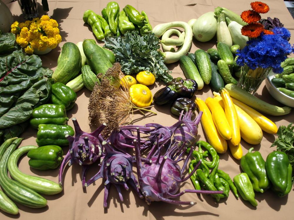 The harvest 1.JPG