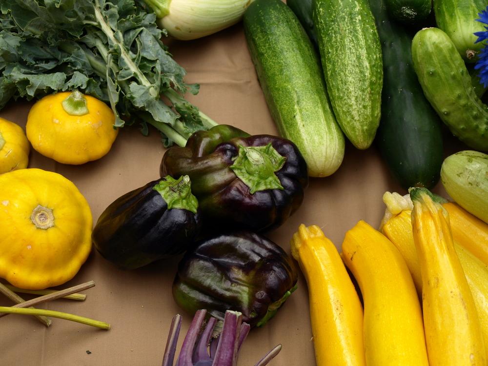 Purple Capsicums and Golden Zucchini