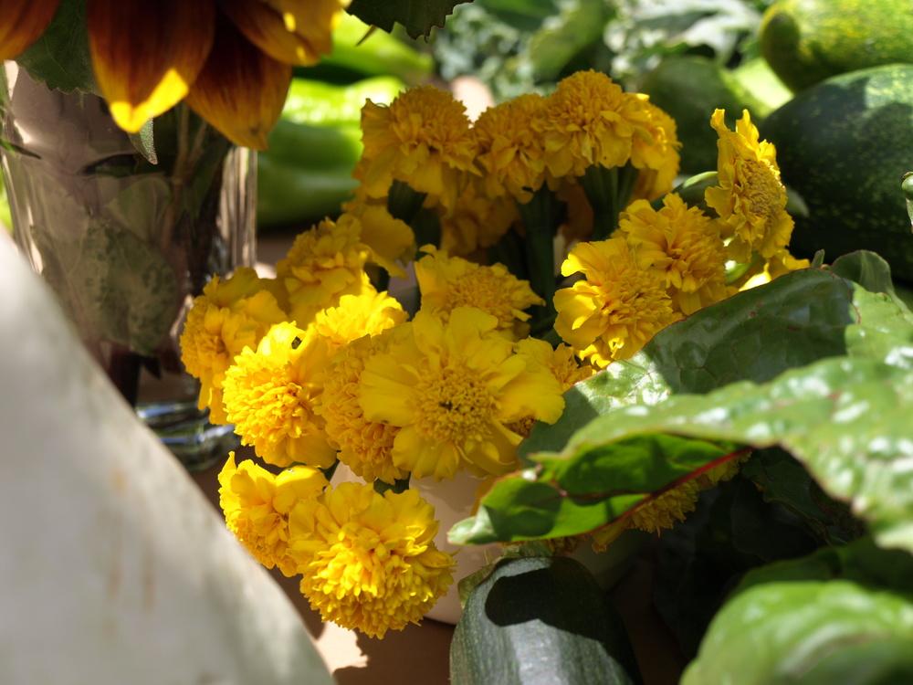 Little Yellow Marigolds