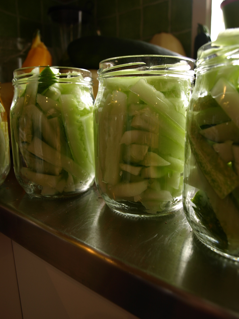 Cucumbers in jars.JPG