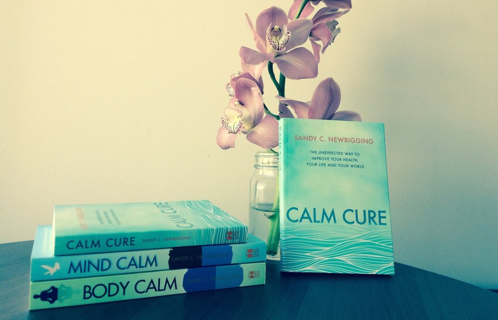 BEST-SELLING AUTHOR - Sandy is the no.1 best-selling author of six books and two albums, including Mind Calm, Body Calm, Thunk, Heal the Hidden Cause and New Beginnings. His most recent book is called Calm Cure, published by Hay House. >>> MORE ABOUT SANDY'S BOOKS