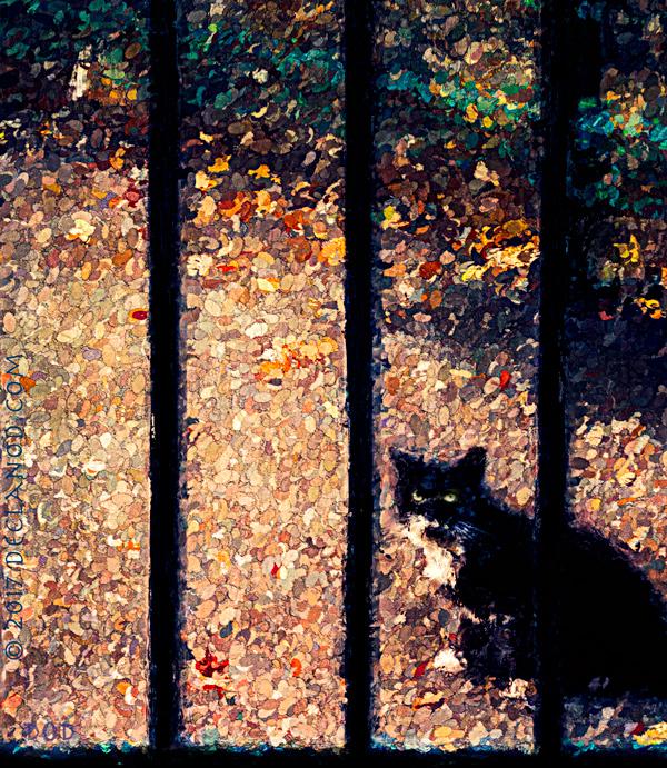 Cat&BarsPainter2Web4.jpg