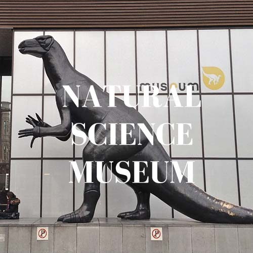 Chelton-hotel-brussels-museum-natural-science