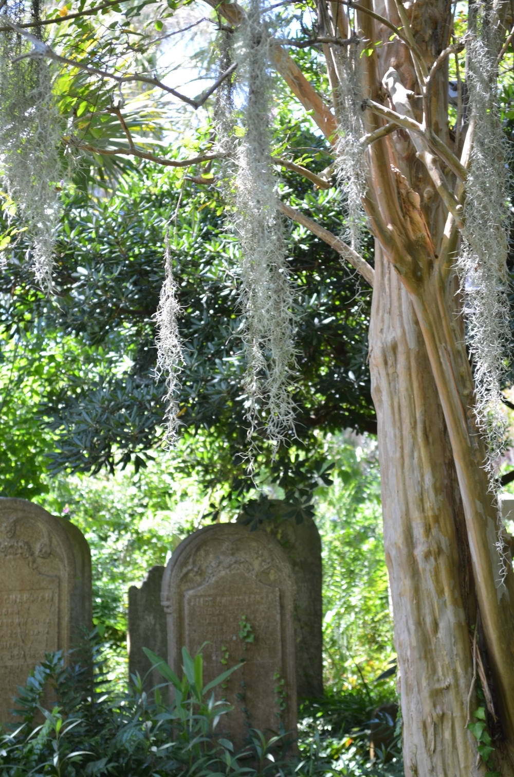 courtyards-cemeteries-charleston-sc