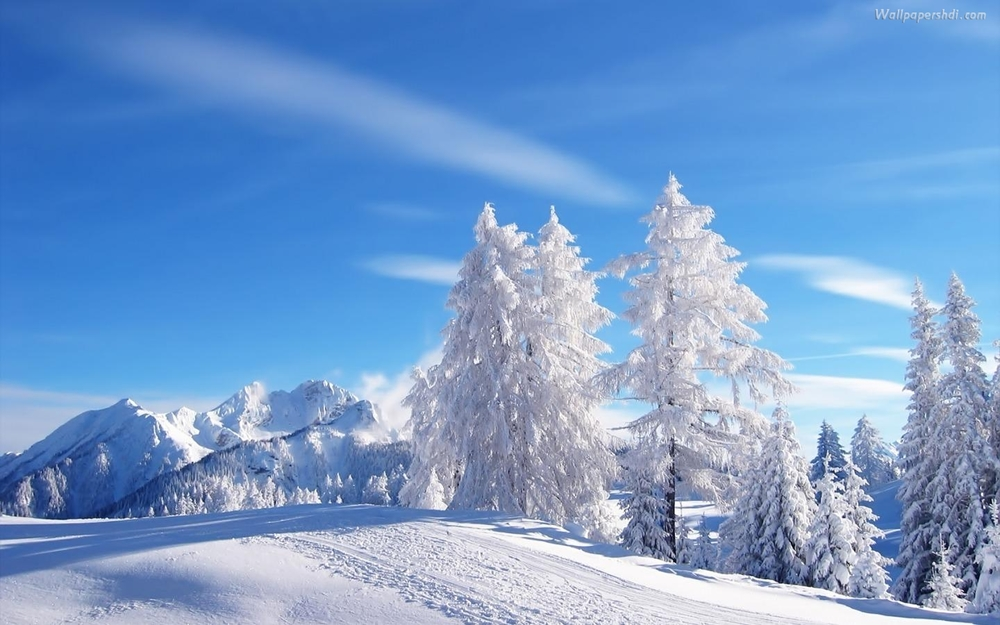 winter-landscape-for-free_489991.jpg