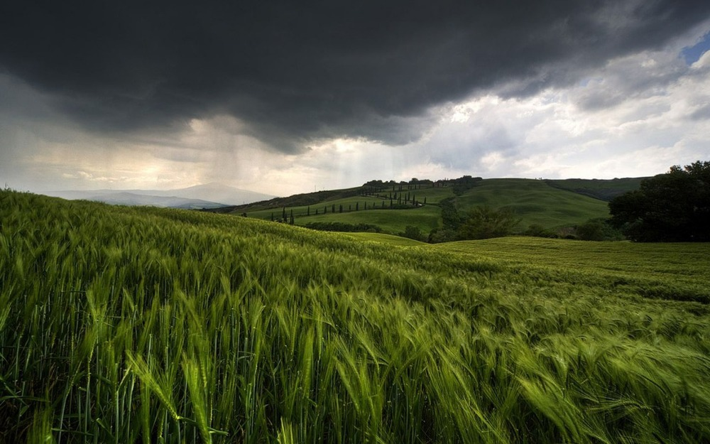 rain_is_coming_wallpaper_landscape_nature_wallpaper_1280_800_widescreen_1652.jpg