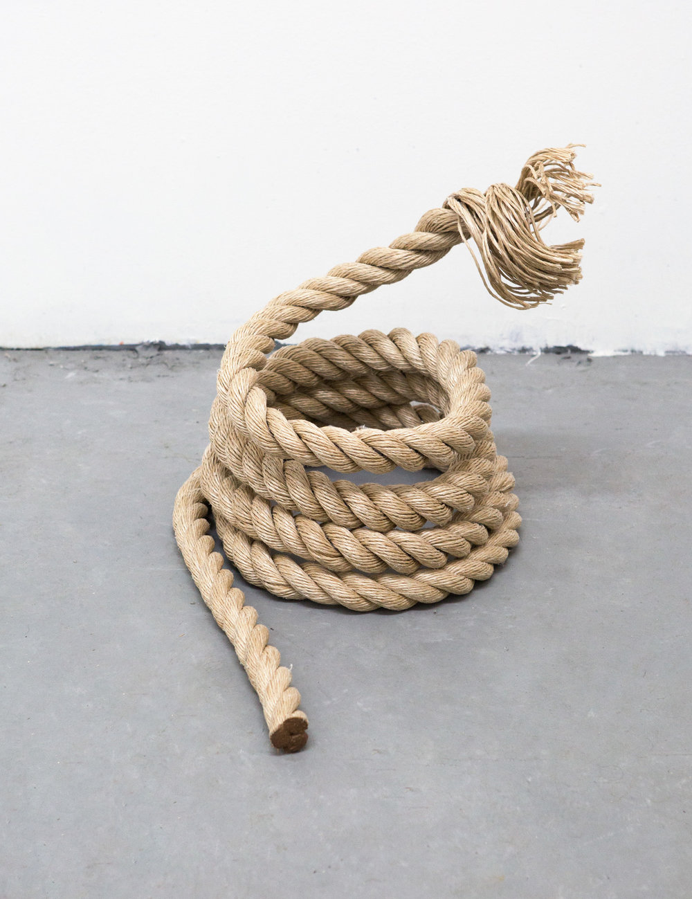 Untitled (4), 2016   Rope, Aluminum