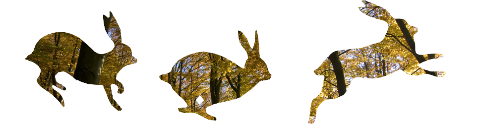 mad hares3.png