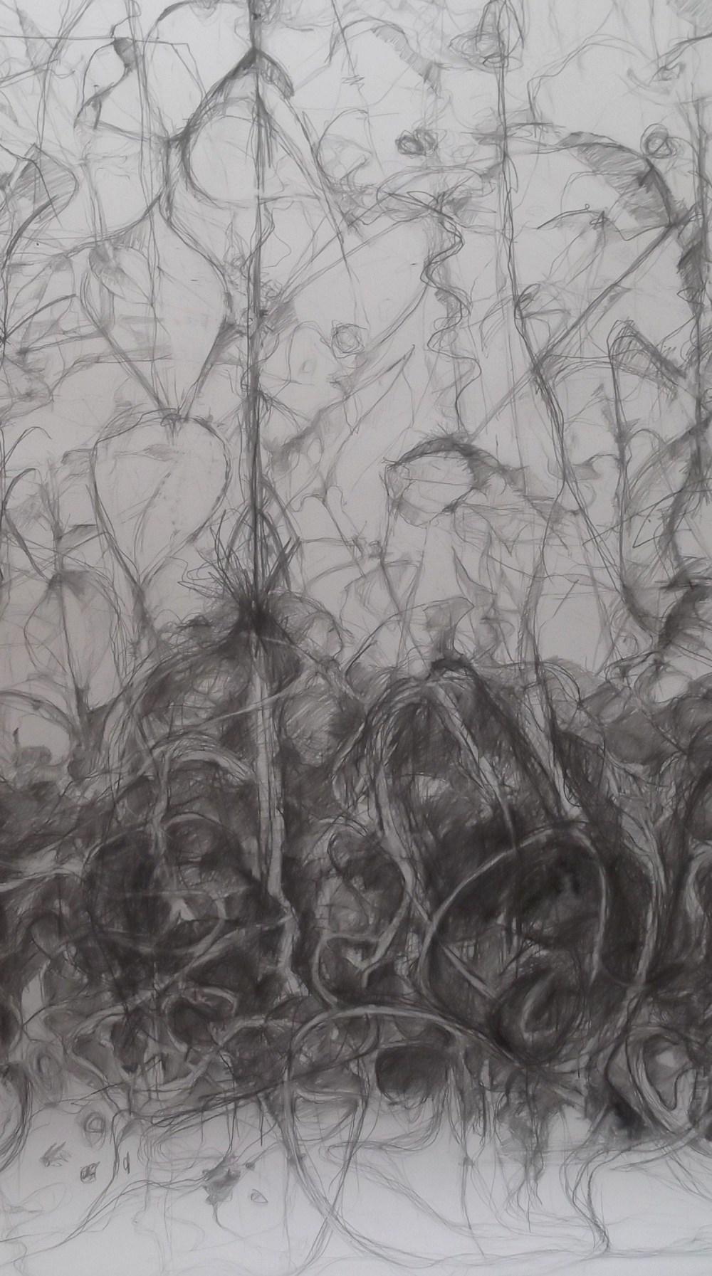 Summer Drawing detail 002.JPG