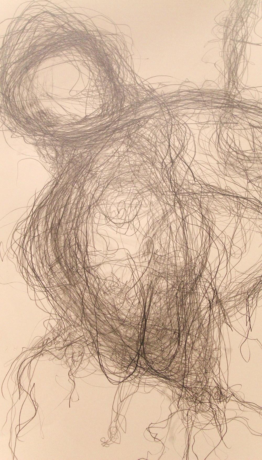 Sheeps wool Llanbrynmair (2012) - detail