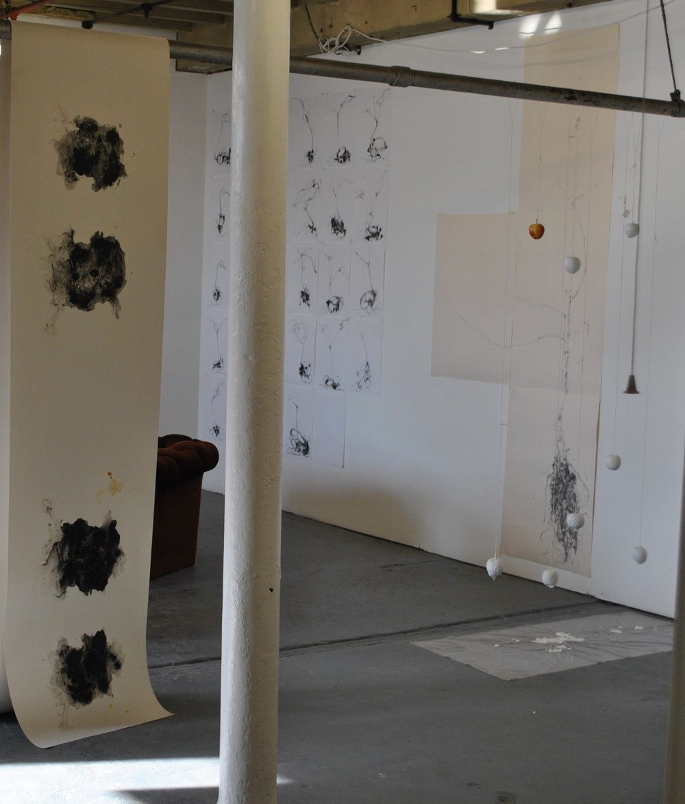 The Heinrich Event at Rogue project space 2013..jpg