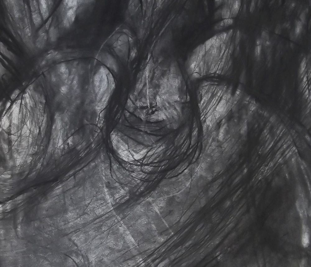 His Land detail Pencil and Charcoal on watercolour paper JPG.JPG