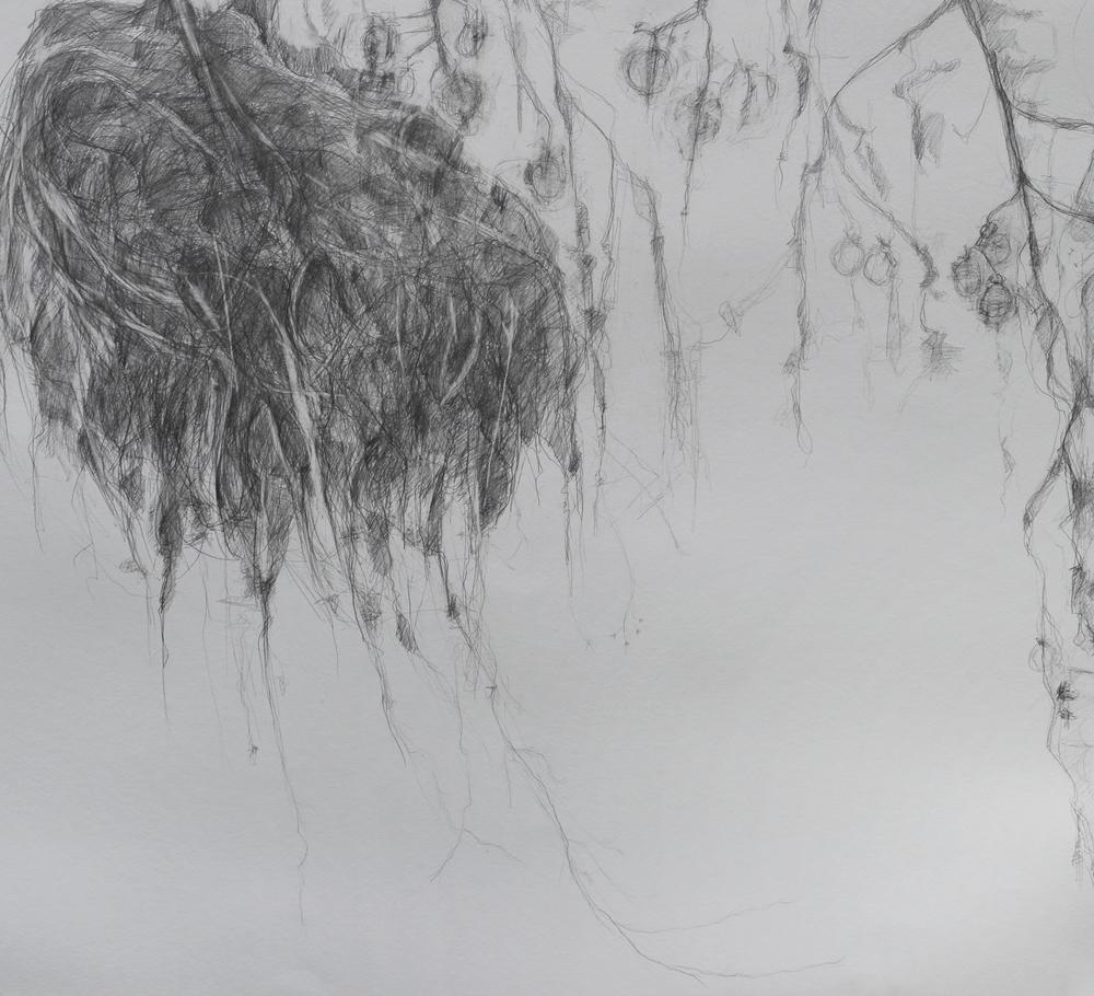 Through The Winter (2016)