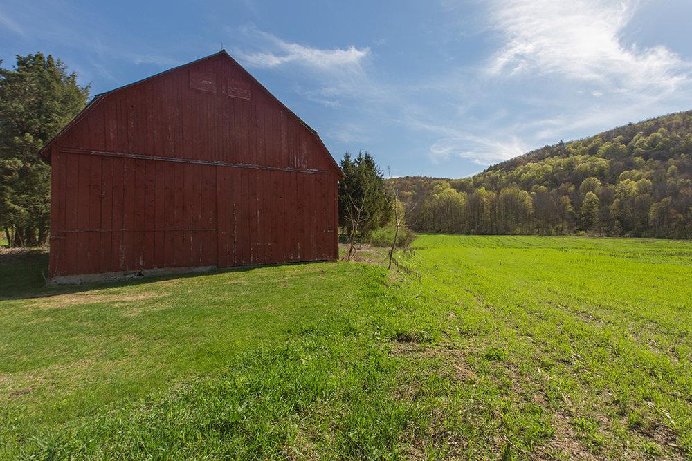 EAP Maria Barr Butternut Farm mls  12.JPG