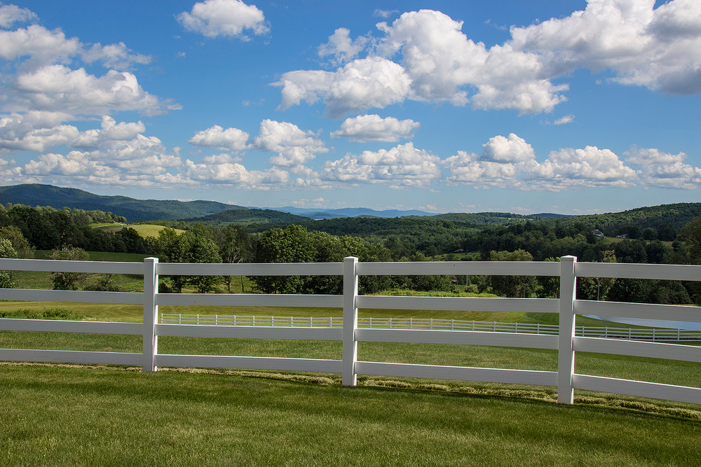 looking at view over fence.jpg