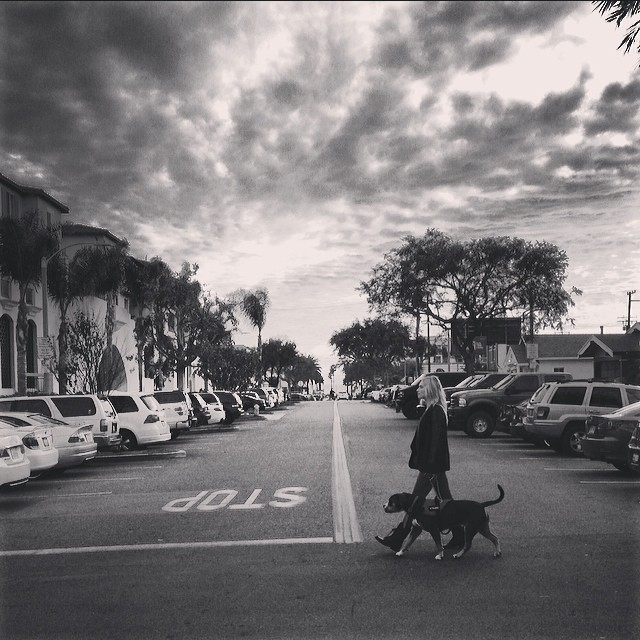 Dog walking the streets of Huntington Beach :)