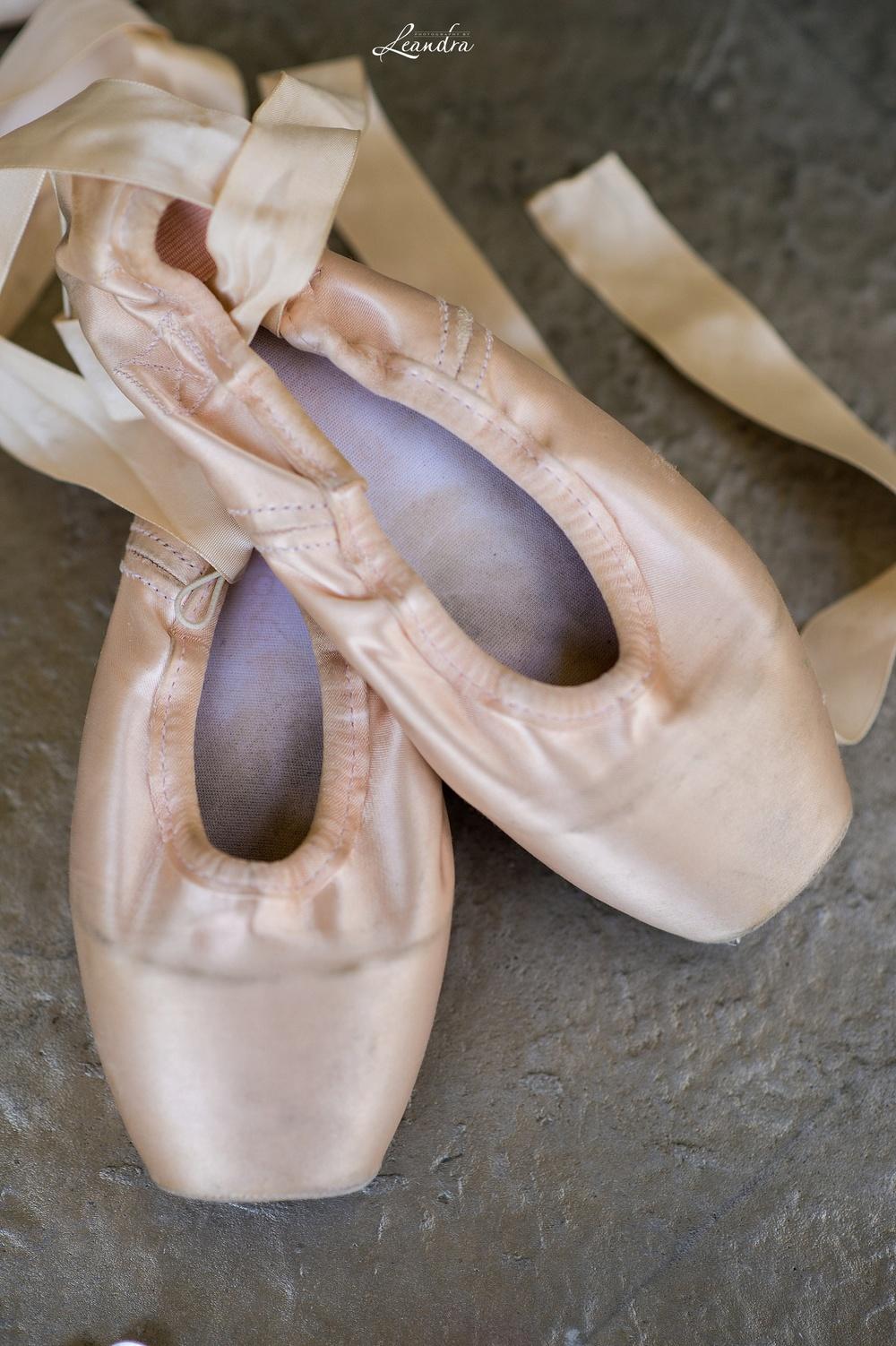 Gaynor Minden Pointe Shoes_0037.jpg