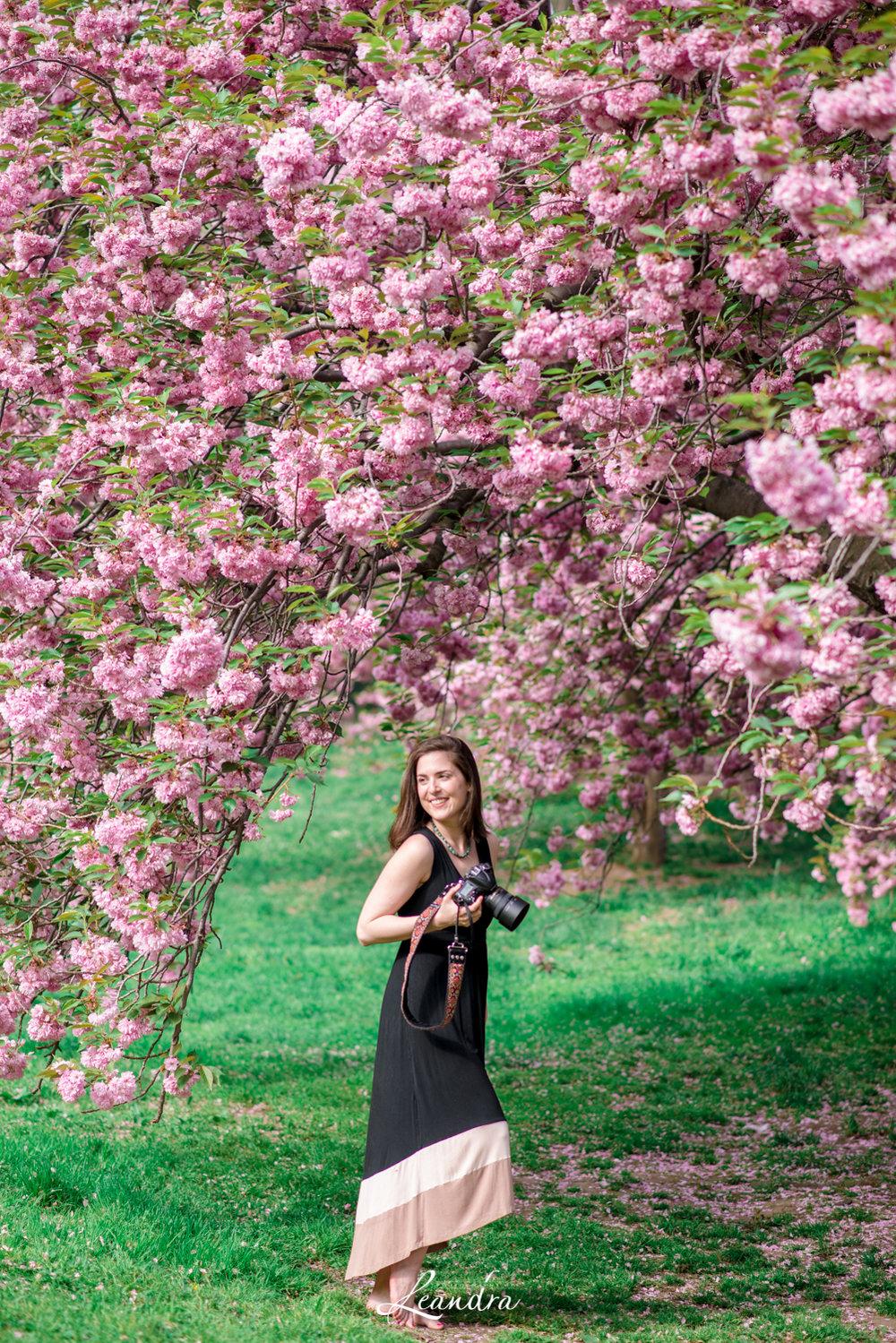 CentralParkCherryBlossoms-09.jpg