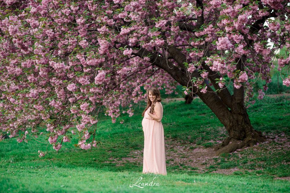 CentralParkCherryBlossoms-23.jpg