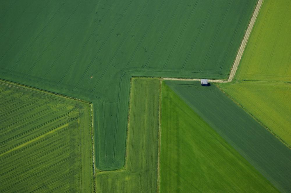 "[Figure 1: Overlaps and intersections. ""Green fields. Örsundaån, Sweden"". Photograph: Christopher Line.]"