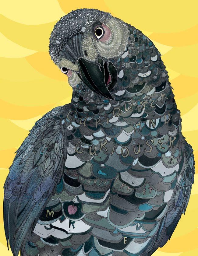 A Clever Bird