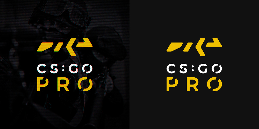 'CS:GO PRO'