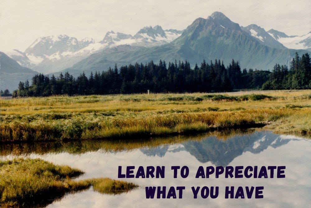 Learn to appreciate.jpg