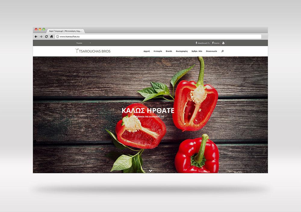 Σχεδιασμός ιστοσελίδας  www.tsarouchas.eu