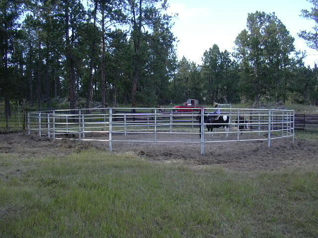 The orientation round pen.JPG