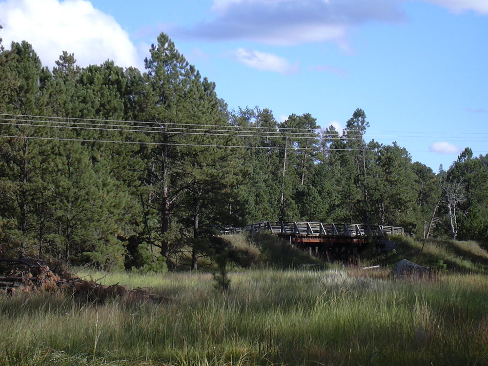 Old Railroad Trestle on the Mickelson.JPG