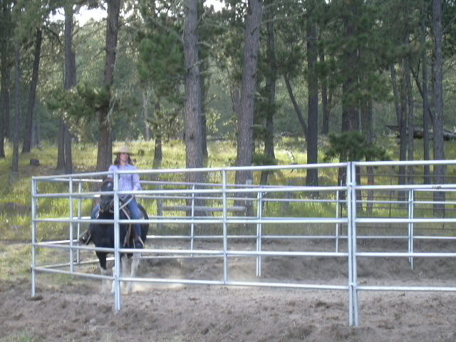 All rides start in the round pen