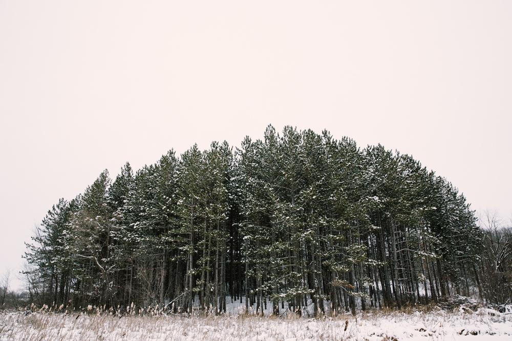 MN_outdoor_photographer_002.JPG