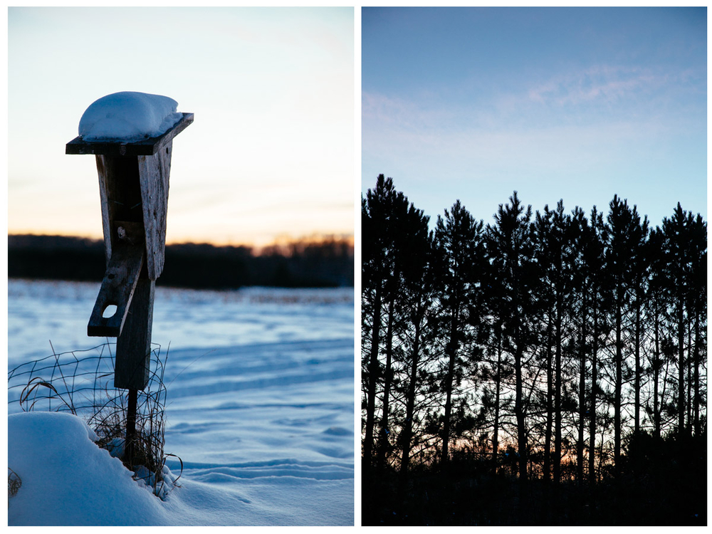 MN_outdoor_photographer_diptych_070.JPG
