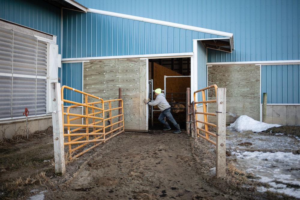 190111Buck_Farm_076.JPG
