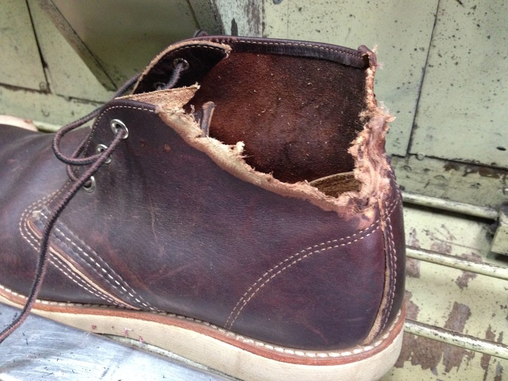 Dog chew ripped off the top part of boot