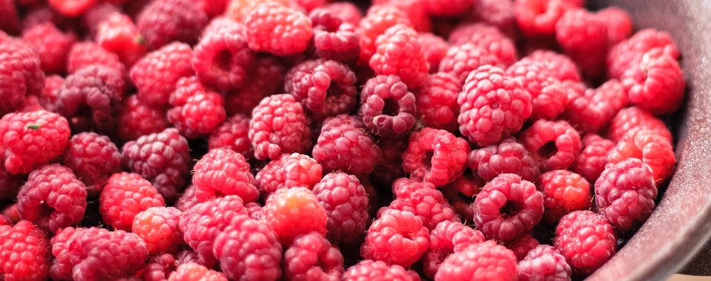 Bowl of Rasberries_Veronica Sulinska_StockSnap.io Photo.jpg