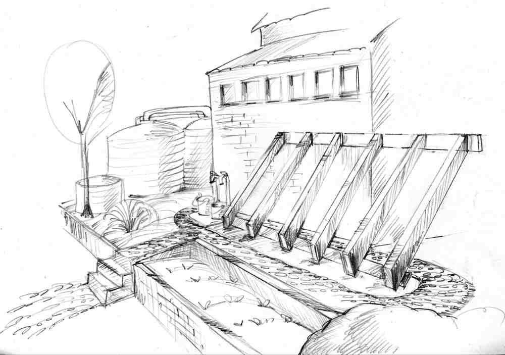 Drawing by Wendy Bishop
