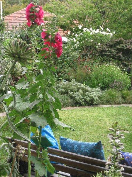 Mandy's Open Garden 2014 128.jpg