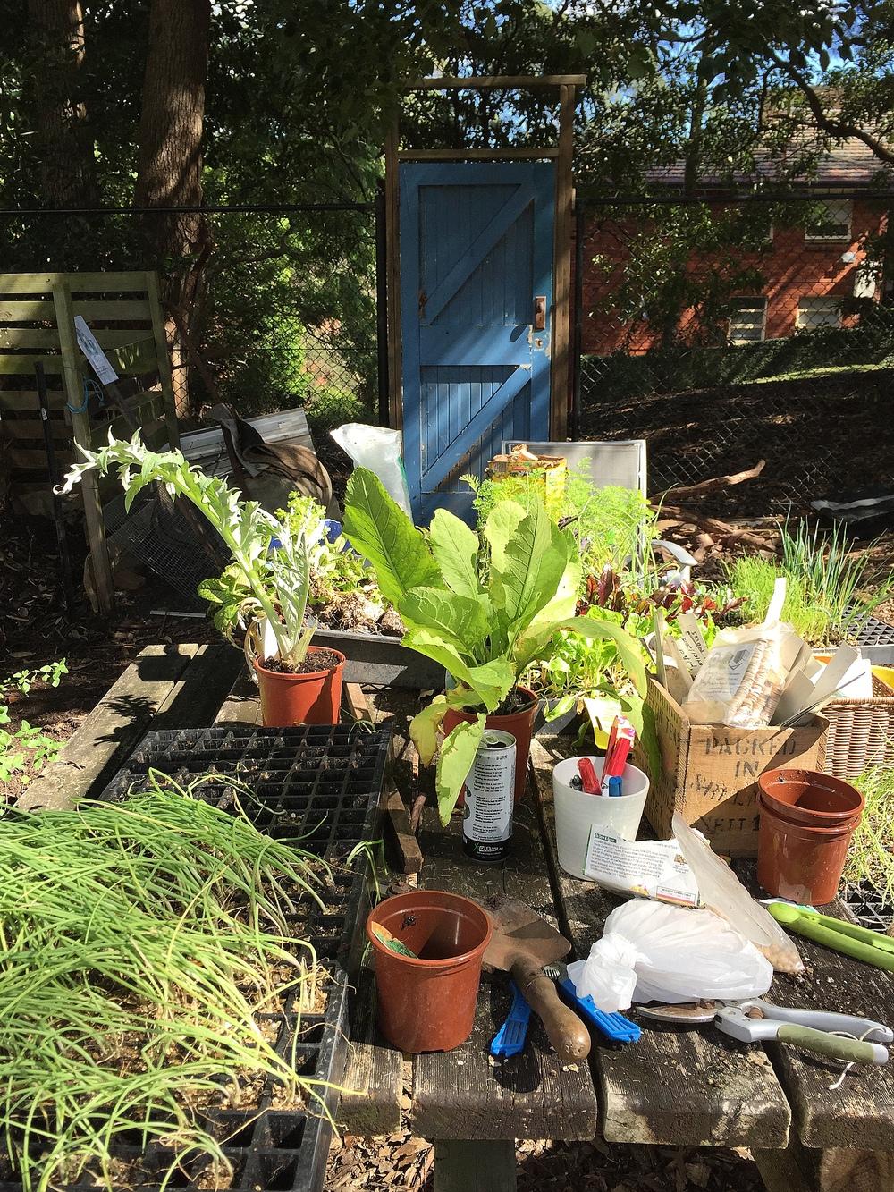 PlantingTable.jpg