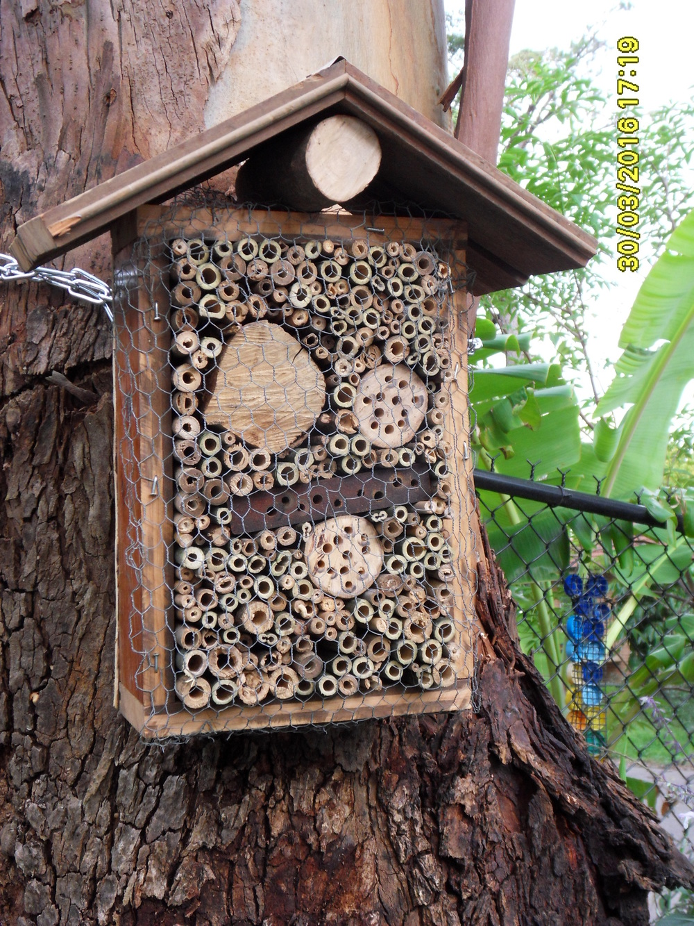 The new native bee house at PermaPatch Community Garden